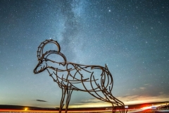 Milky Way and the Goat - Goat Gap Cafe, Newby