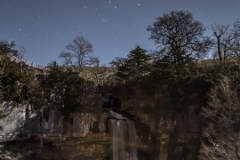 Moonlit Thornton Force
